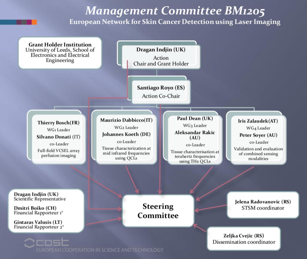 organisation-scheme